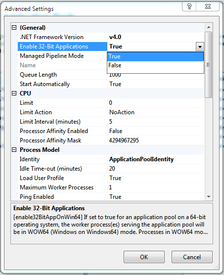 Enable 32-Bit Applications property in Advanced Settings dialog box.